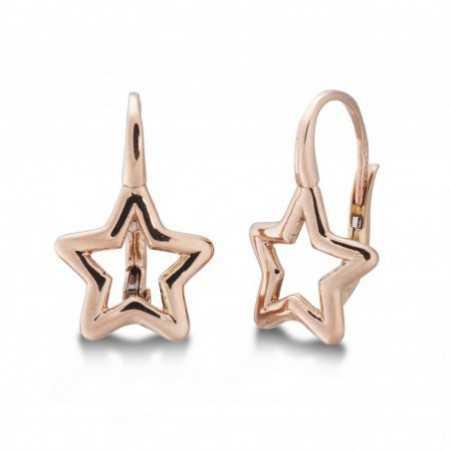 Gold earrings GOLD STAR BASIC FINA
